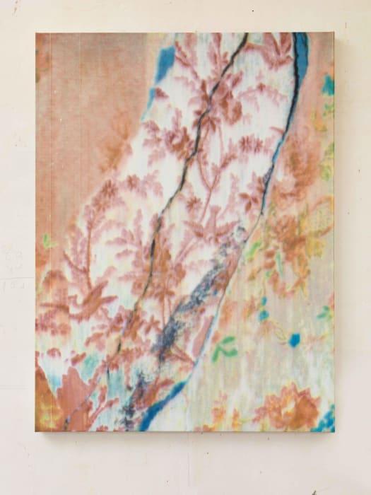 Fleurs Fantômes 137 by Gabriel Orozco
