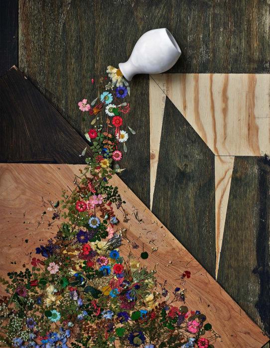 Flowers for Lisa #30 by Abelardo Morell