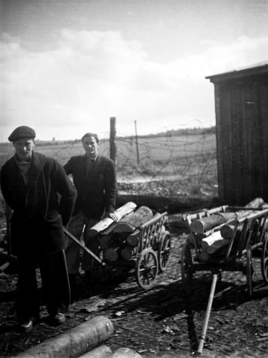 Picking up the weekly firewood ration, Kassel/Mattenberg D.P. Camp, 1948 by Jonas Mekas