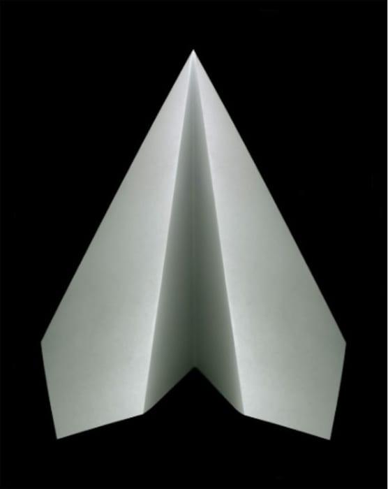 Paper plane by Edgar Martins