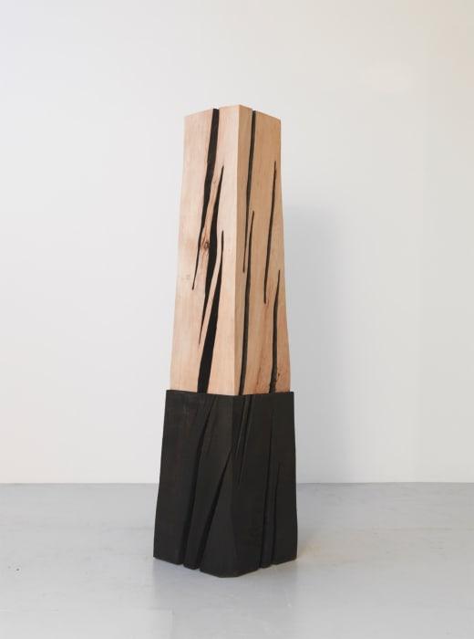 Black in White, Black in Black: Column by David Nash