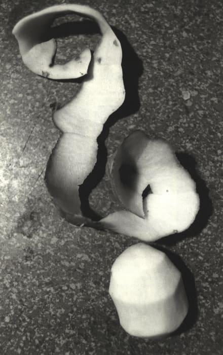 Potato-Writing by Anna und Bernhard Blume