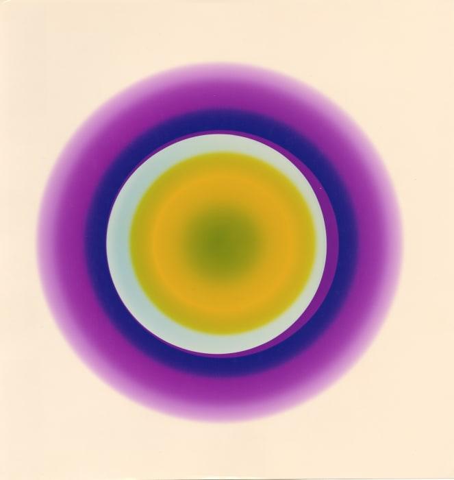 Ohne Titel, aus der Serie 'Tellerbilder' by Floris Neusüss