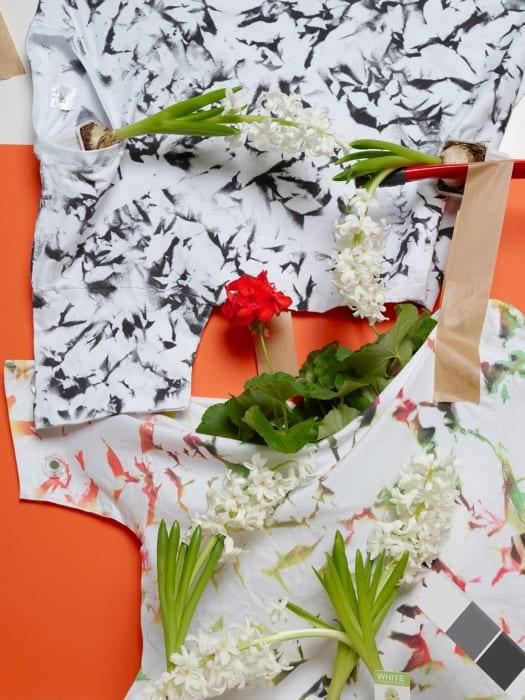 Geranium and Hyacinths by Annette Kelm