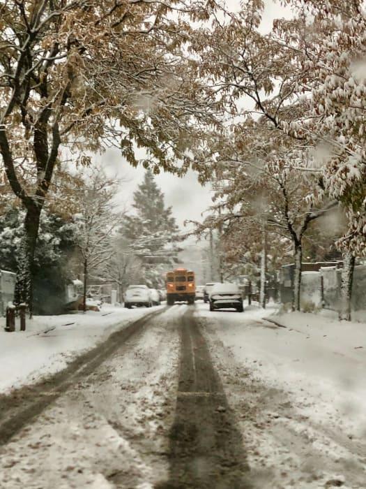 School Bus, East New York by Roe Ethridge