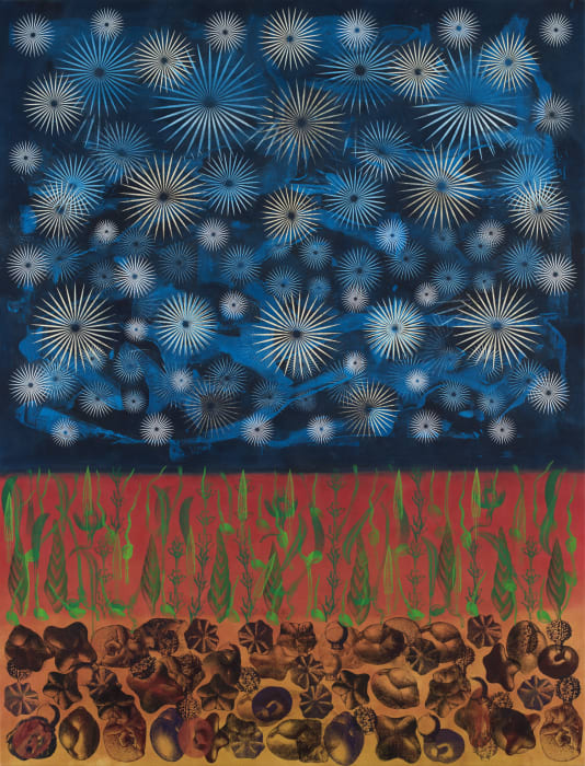 Evening Star by Philip Taaffe