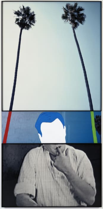 The Overlap Series: Two Palm Trees (and Person CHF with Finger in Mouth) by John Baldessari