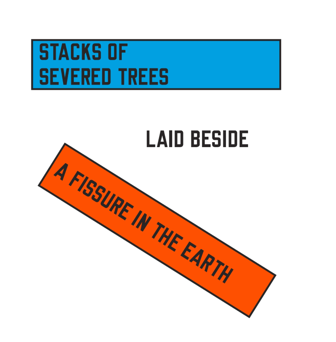 STACKS OF SEVERED TREES LAID BESIDE A FISSURE IN THE EARTH by Lawrence Weiner