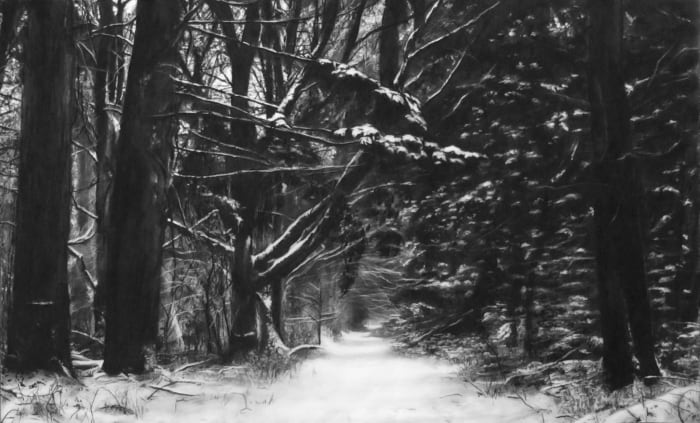 Study of Winter Forest by Robert Longo
