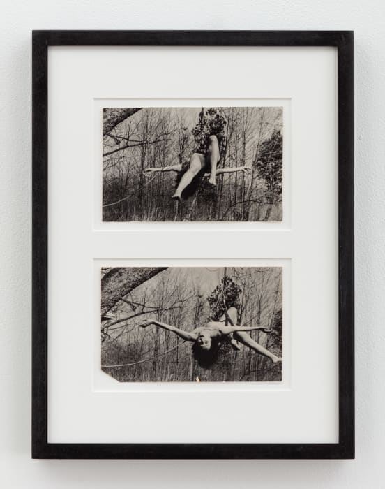 Up to and Including her Limits by Carolee Schneemann