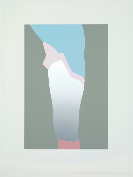 06 from The Sister Troop by Gary Hume