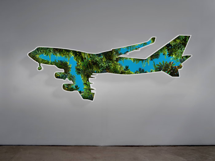 Not yet titled by Doug Aitken