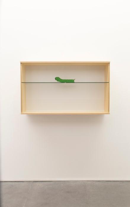 Untitled (caterpillar) by Haim Steinbach