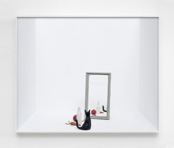 Untitled (cat and mirror) by João Maria Gusmão + Pedro Paiva