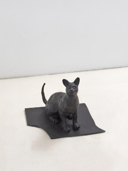 Black cat by João Maria Gusmão + Pedro Paiva