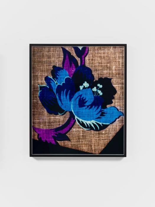 Remnant (Flower) by Lisa Oppenheim
