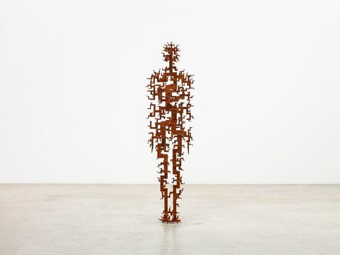 SECOND GROWTH by Antony Gormley