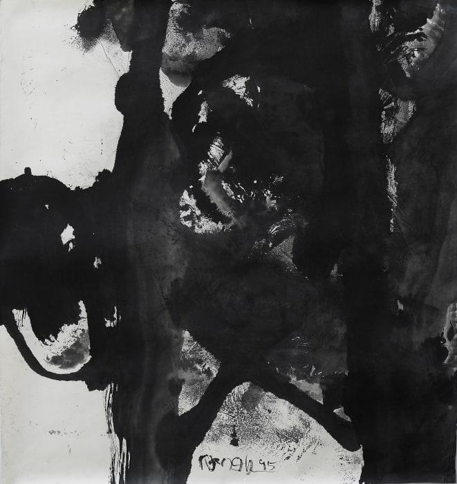 1995-B2 by Chuan Wang