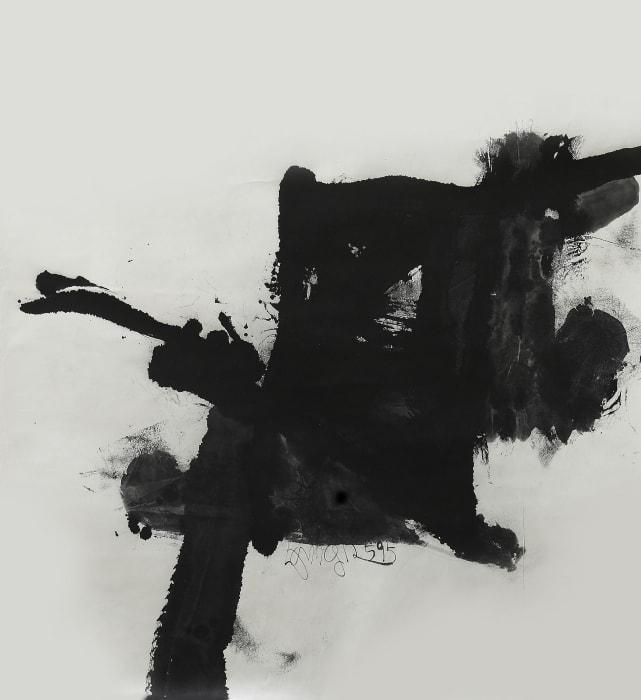 1995-B5 by Chuan Wang