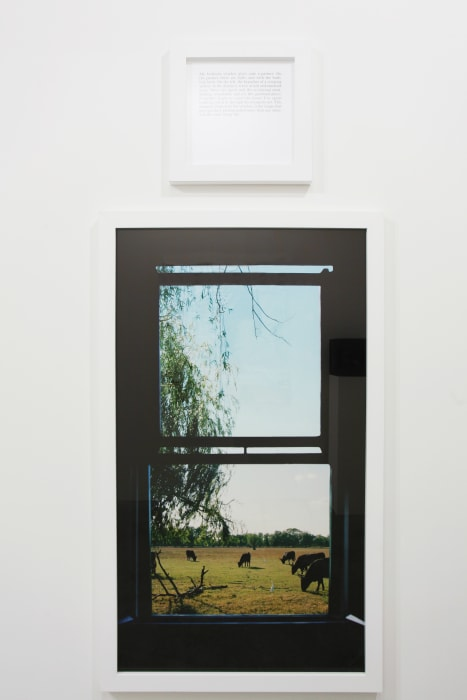 The view of my life by Sophie Calle