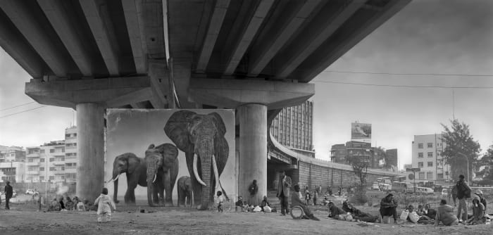 Underpass With Elephant (Lean back your life is on track) by Nick Brandt