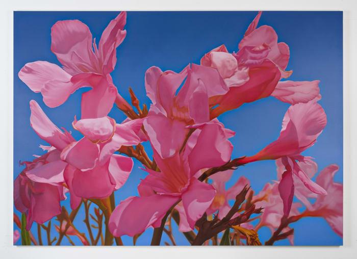 Oleander 1 by Mustafa Hulusi