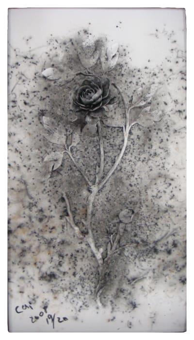 Black Peony by Cai Guo-Qiang