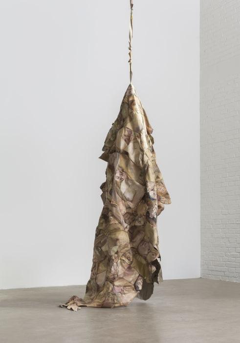 The Falling Flesh by Hu Qingyan