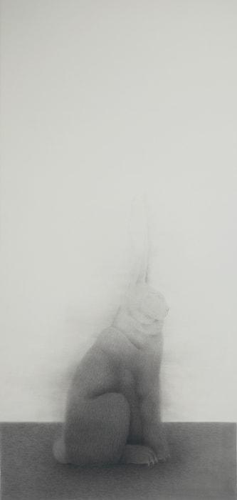 Rabbit from the Side by Shao Fan