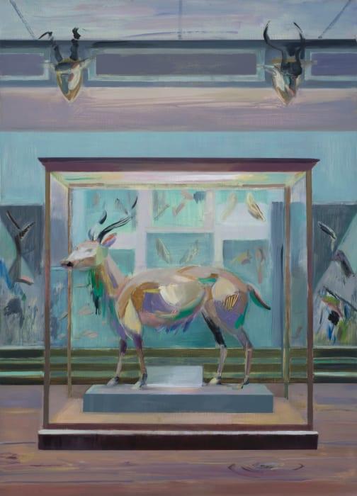 Antelope, Natural History Museum, Dublin by Mairead O'hEocha