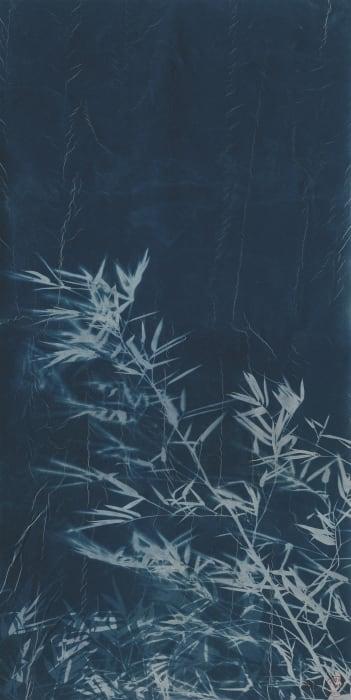 Bamboo 3 by Zhang Dali