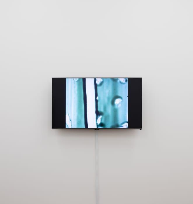 A Colour Box by Len Lye