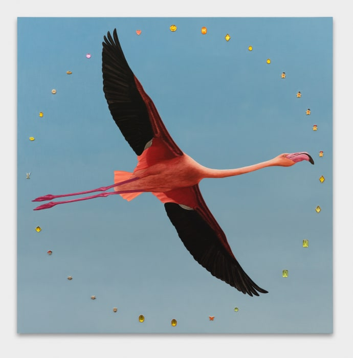 Greater Flamingo with Aureole by Greg Parma Smith