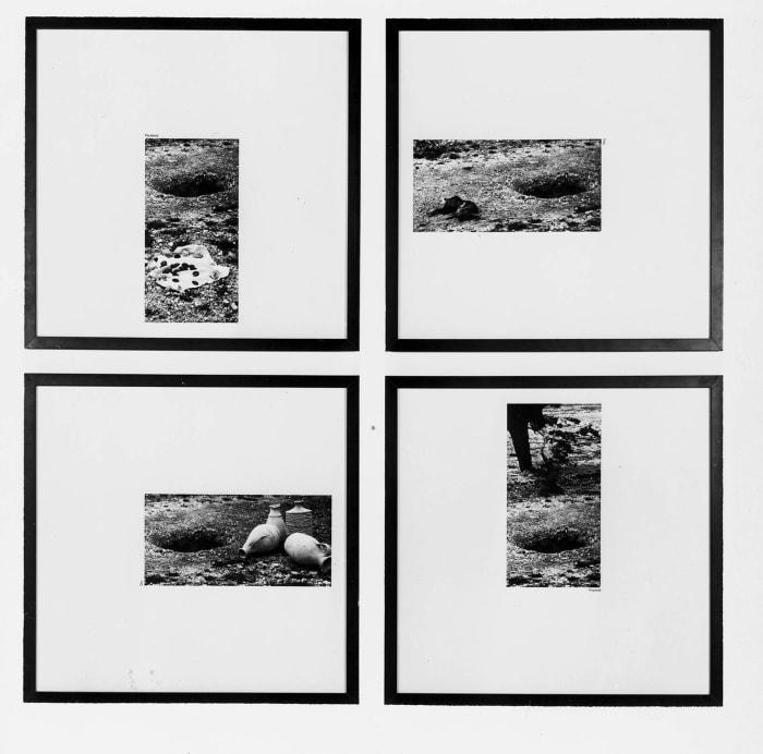 Plundered/Dug/Prepared/Dry (1a) by John Hilliard