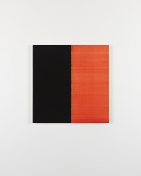 Untitled No.8 2016 Vine Black by Callum Innes