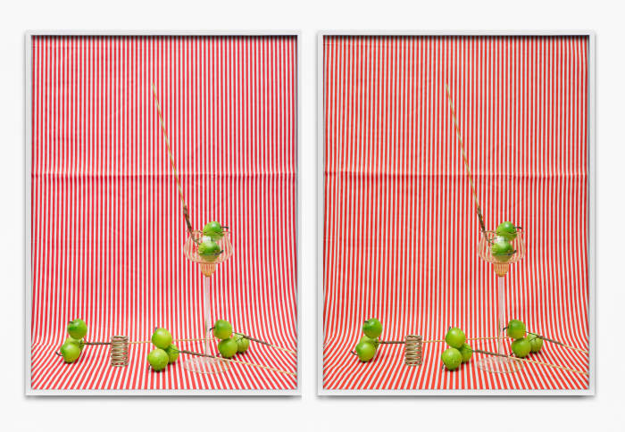 Apples by Annette Kelm