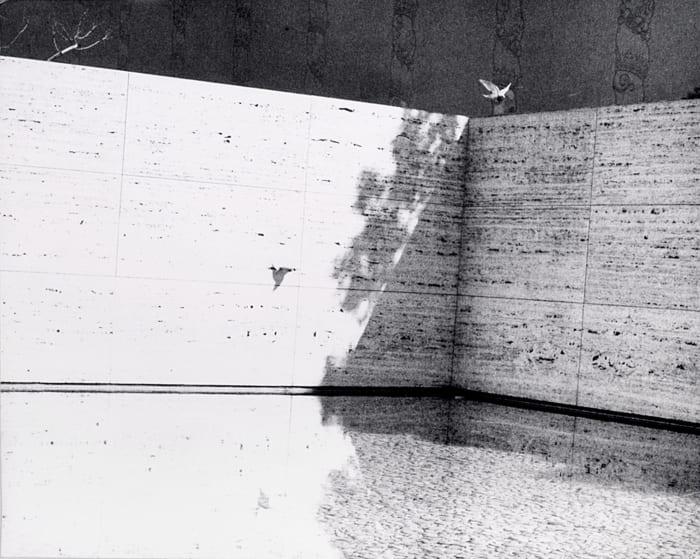 Untitled (Barcelona Pavilion) by Jochen Lempert