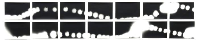 Firefly (movements on 35 mm) by Jochen Lempert