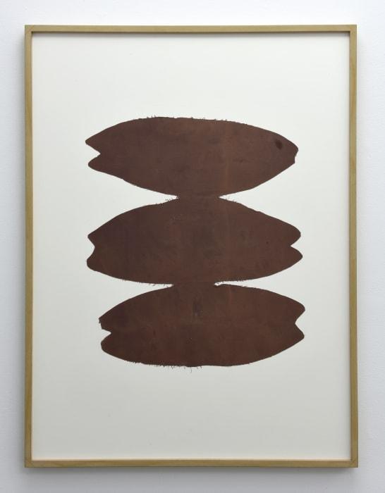 Nutshell by Patricia Dauder