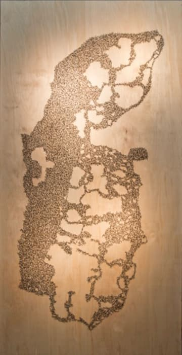 Area C Fields of Gold (Map) by Khalil Rabah