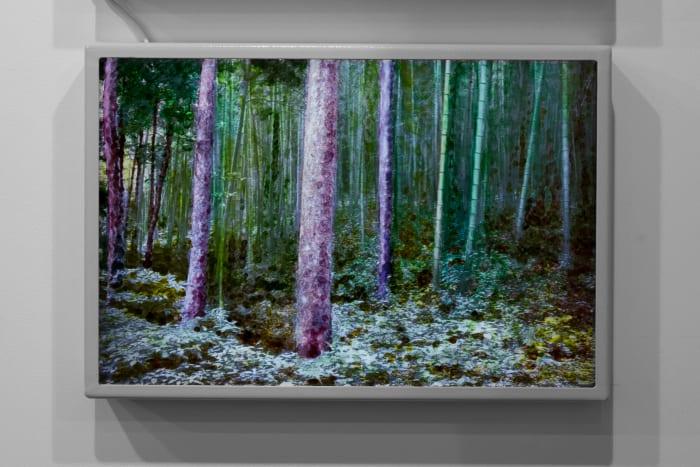 Landscapes 5 by Geng Jianyi