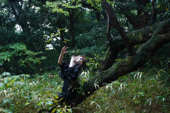 For Kazuo Ohno's Admiring La Argentina - in the forest by Yasumasa Morimura
