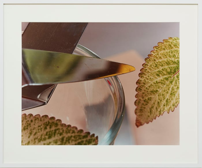 Untitled (KSL 58.3) by Jan Groover