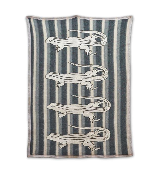 Lagartijas (Blankets Series) by Feliciano Centurión