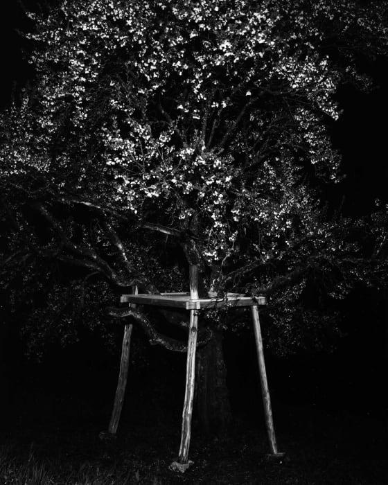 Untitled (stage) by Jonas Burkhalter