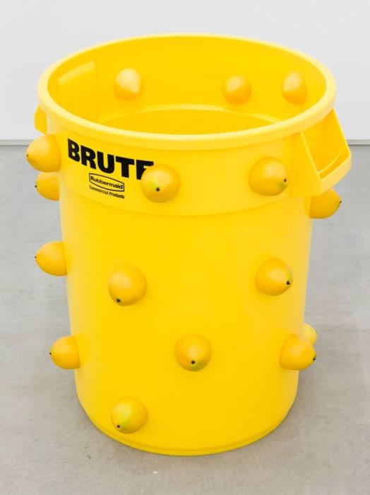 Lemon Brute by Nancy Lupo