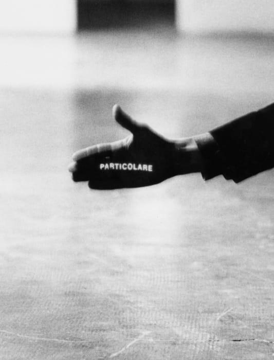Particolare by Giovanni Anselmo