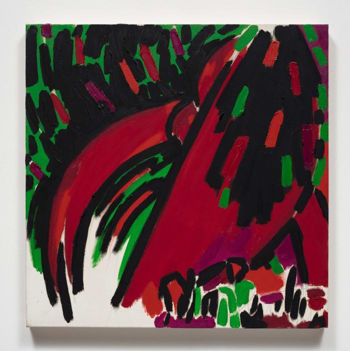Anthurium Red Green and Black by Judith Bernstein