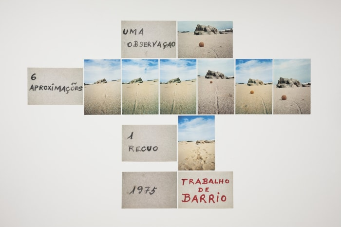 Uma observação, 6 aproximações, 1 recuo by Artur Barrio
