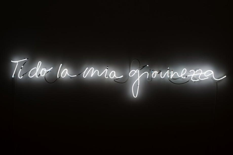 Ti do la mia giovinezza by Mircea Cantor